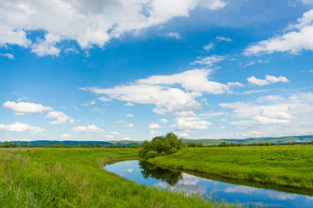 Peaceful summer rural landscape with river in wide field