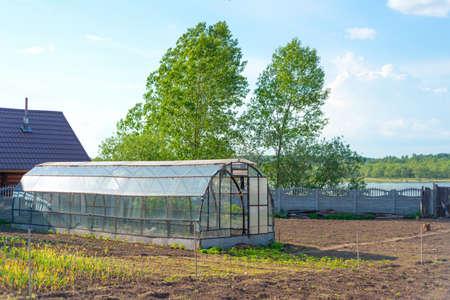 Rural greenhouse in the summer garden photo