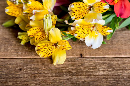 Alstroemelias flowers on a wooden background