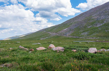Landscape of grass or tundra, a few rocks and stark hillside along Mount Evans Scenic Byway in Colorado
