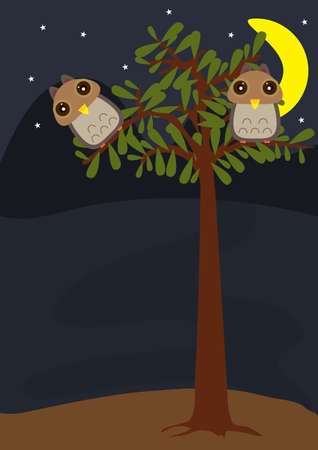 Night scene owls at tree   Vector