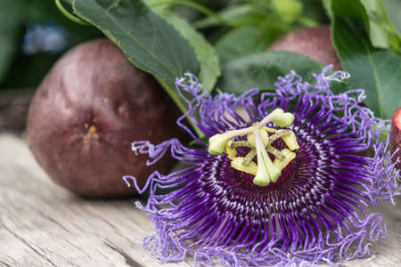 Blossom of passionfruit with a fruit in the background