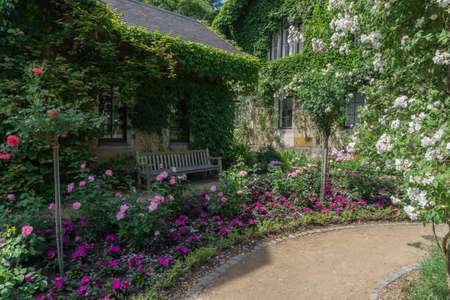 Small enchanted garden Stock Photo