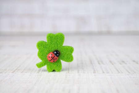 Four-leaf clover and ladybird