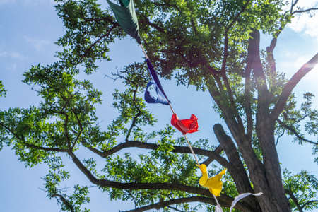 Colorful flags stretched between trees, blue sky background