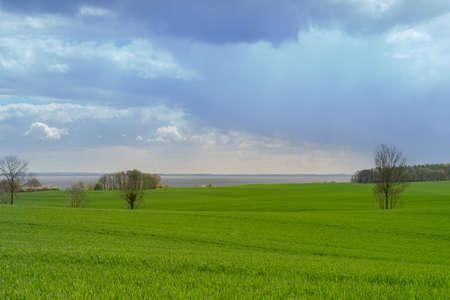 Beautiful view over green fields on the German Baltic coast near Groemitz Zdjęcie Seryjne