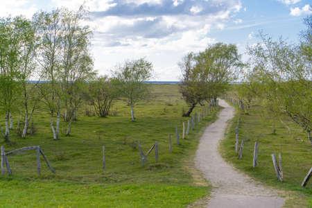 Path to the beach on the German Baltic coast near Wangels Zdjęcie Seryjne