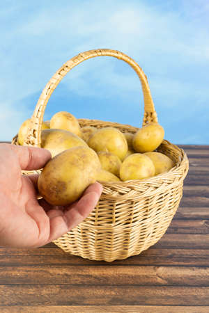 Woman takes a potato from a wicker basket with potatoes, which stands on a wooden table, blue sky as background