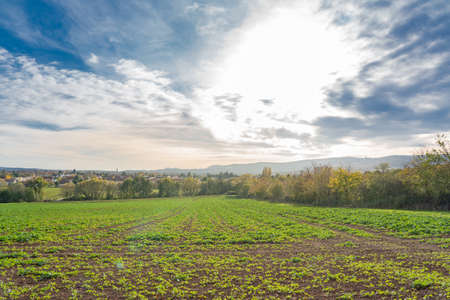View over a field towards Kassel, a city in northern Hesse, Germany Stockfoto