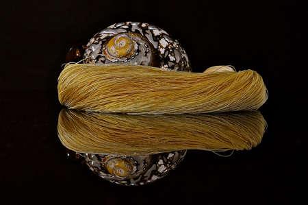 Nautilus shell on black reflective surface