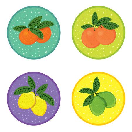 mix fruit: Set of fresh juicy fruit icons with shadows. summer tropical fruit mix, symbols. Cartoon design, vector illustration.