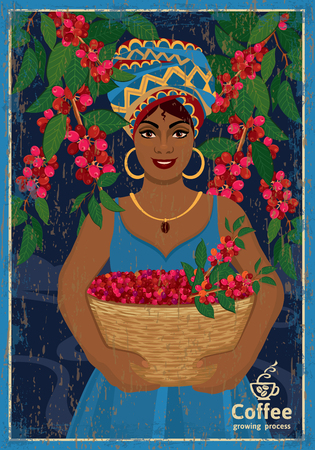 Vintage poster with woman coffee farmer picking red coffee beans on coffee tree. Vector illustration with scratches and scuffs