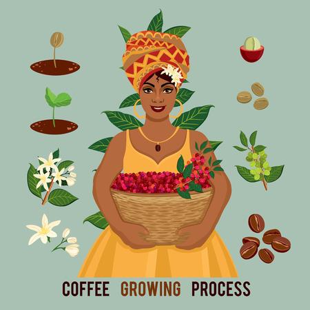 Pianta che cresce dal seme alla pianta del caffè, ciclo di vita di una pianta. Coltivatore di caffè con un cesto di caffè. Germoglio, pianta, albero coltiva l'icona dell'azienda agricola del fagiolo.