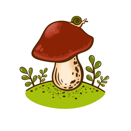 Colored drawing porcini mushroom isolated on white background. Hand drawn vector illustration with organic vegetarian product. Great for menu, label, product packaging, recipe