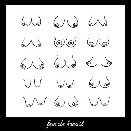 Poster mit Frauen verschiedener Typen, Größen und Formen auf weißem Hintergrund. Vektor weiblicher Brustsatz. Illustration im grafischen Stil (handgezeichnet)