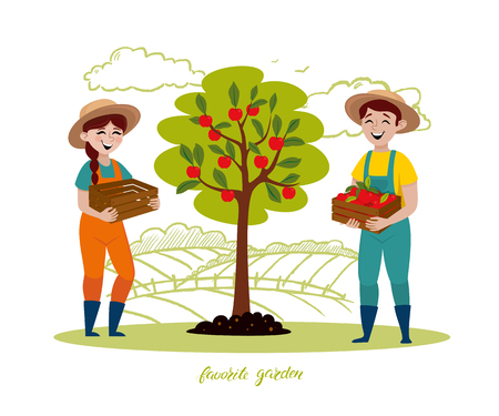Happy young couple are working in the garden. Gardenirs picking apple in fruits garden. Vector illustration in a cartoon style