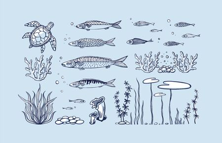 Vector set of sea animals - coral, seaweed, fish, turtle, bubbles and sea pebbles. Flat hand drawn illustration underwater species, marine creatures, sea or ocean flora and fauna. Underwater ocean creatures. Ilustrace