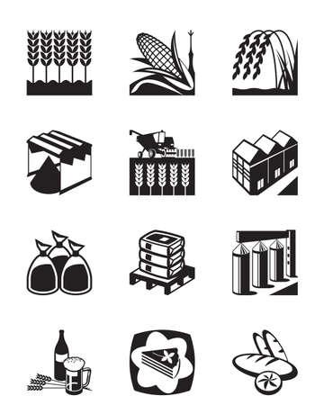 Producción y transformación de los cereales de grano - ilustración vectorial Foto de archivo - 36116436