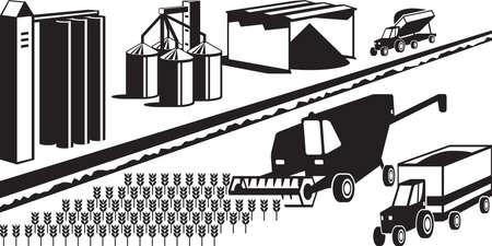 La recolección y el almacenamiento de cereales de grano Ilustración de vector
