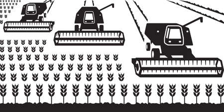 grain fields: Combine harvesters gathering wheat -  illustrator Illustration