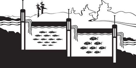 Pisciculture sur la rivière dans les montagnes - illustration vectorielle Vecteurs