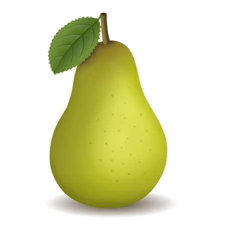 ilustracja na białym tle zielona gruszka