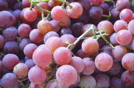 Red wine grapes background