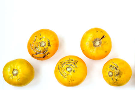 Trendy large ugly organic yellow tomatoes on a white background, top view, horizontal orientation Stok Fotoğraf