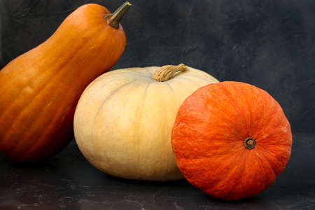 Bright Mature pumpkins are located on a dark background, horizontal orientation, closeup