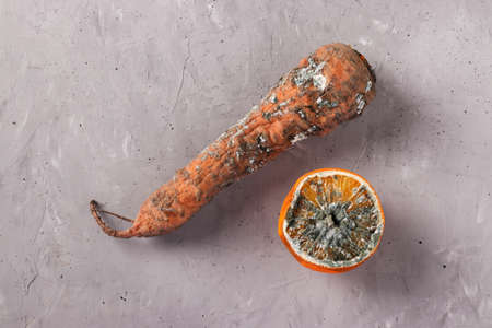 Spoiled rotten foods with mold: carrot and half an orange on gray background, Closeup, Top view