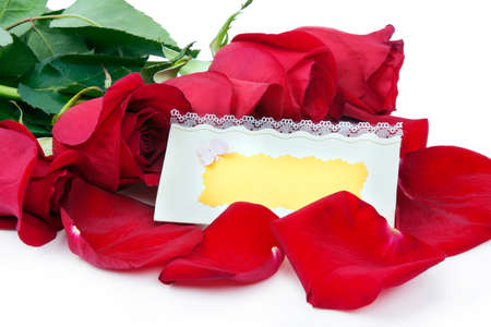 Red roses with a blank gift card on a white background
