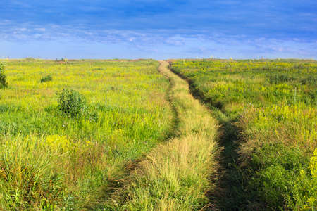 on forked: forked footpath on a yellow-green grassy valley and blue cloudly sky Stock Photo