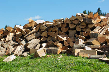 sectional drawing stack of firewood on the green grass and blue sky on the background