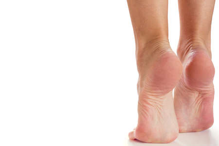 female feet stand on their toes