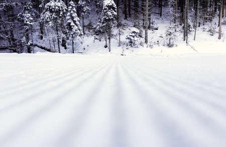 Treated track in a ski resort in winter