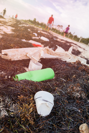 Plastic Bottles Pollution and Seaweeds on Sandy Caribbean Beach 版權商用圖片