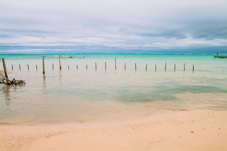 Man Looking at the Horizon in front of an Overcast Caribbean Sea