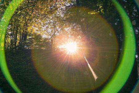 Spheric Lens Flare Chromatic Aberration in Forest at Sunset