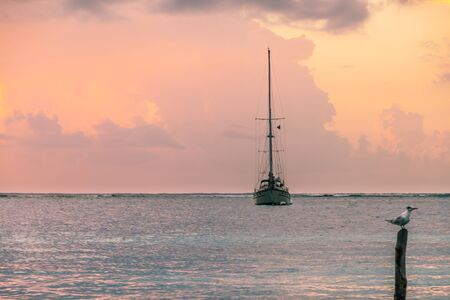 Fishing Boat and Seagull in Caribbean Sunrise over the Sea, Mexico 스톡 콘텐츠