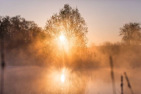 Sunrise Light Piercing Through Mist and Trees and Reflecting in Lake