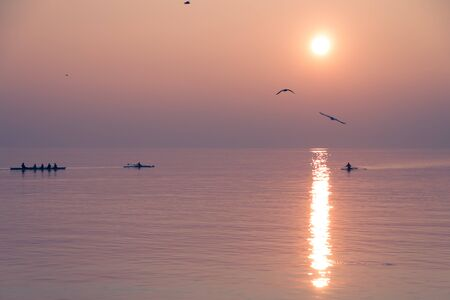 Seagulls Flying over Rowing Team Training over Shimmering Lake at Sunset 免版税图像