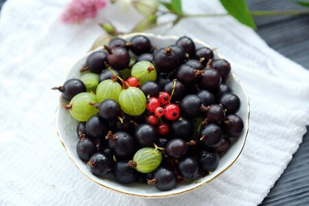 Plate with blackcurrants and gooseberries beautiful view