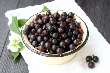 Delicious fresh black currants in plate