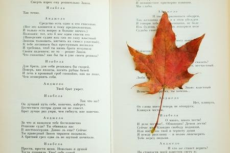 시와 단풍으로 된 오래된 책은 테이블에 남는다. 스톡 콘텐츠