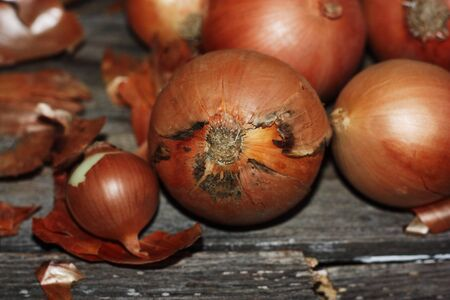 Fresh onions on a wooden table macro