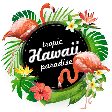 show plant: Hawaii tropic paradise. Vector illustration of tropical birds, flowers, leaves. Illustration