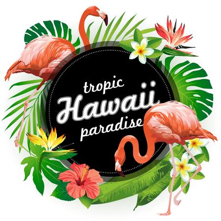 Hawaii tropic paradise. Vector illustration of tropical birds, flowers, leaves. Illustration