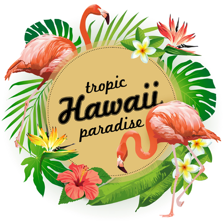 Hawaii tropic paradise. Vector illustration of tropical birds, flowers, leaves. 向量圖像