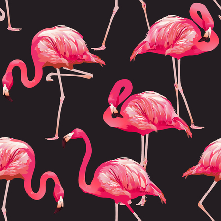 Tropical Bird Flamingo Background - Seamless pattern vector
