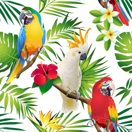 Patrón sin fisuras de loros cacatúa en las ramas tropicales con hojas y flores en la oscuridad. Vector dibujado a mano Ilustración de vector